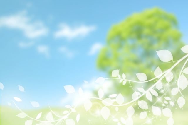 花の名所~日本で花がきれいに見える場所はどこ?~