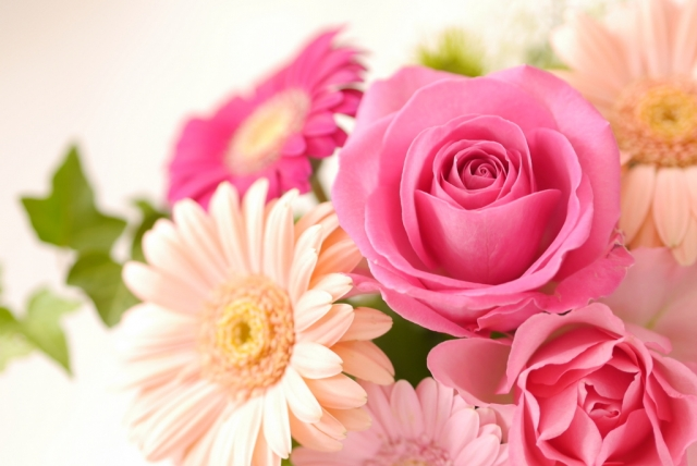 花言葉にはどんな意味があるの?感謝の花言葉を持つ花一覧
