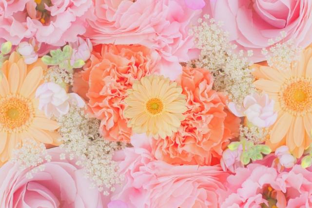 ピンクの花を贈りたい人必見!贈り物にオススメのピンクの花をご紹介!