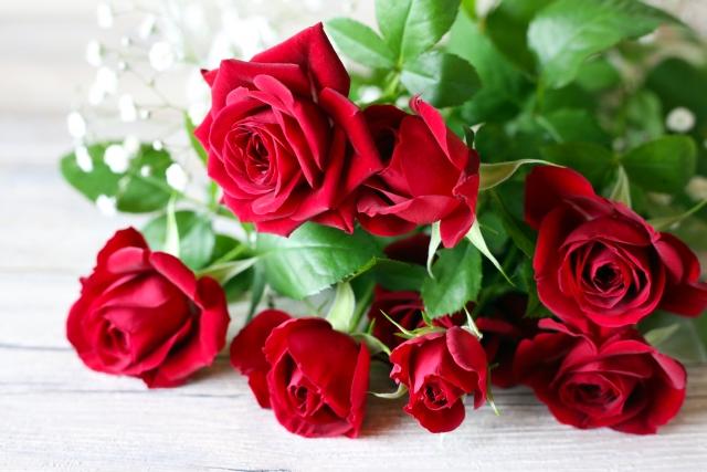 プロポーズにピッタリな花は?プロポーズに相応しい花言葉もご紹介!
