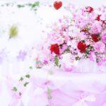 育てている花に元気がなくなった時の対処法